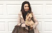 Sweater, Yorkie and Louis Vuitton Speedy 30
