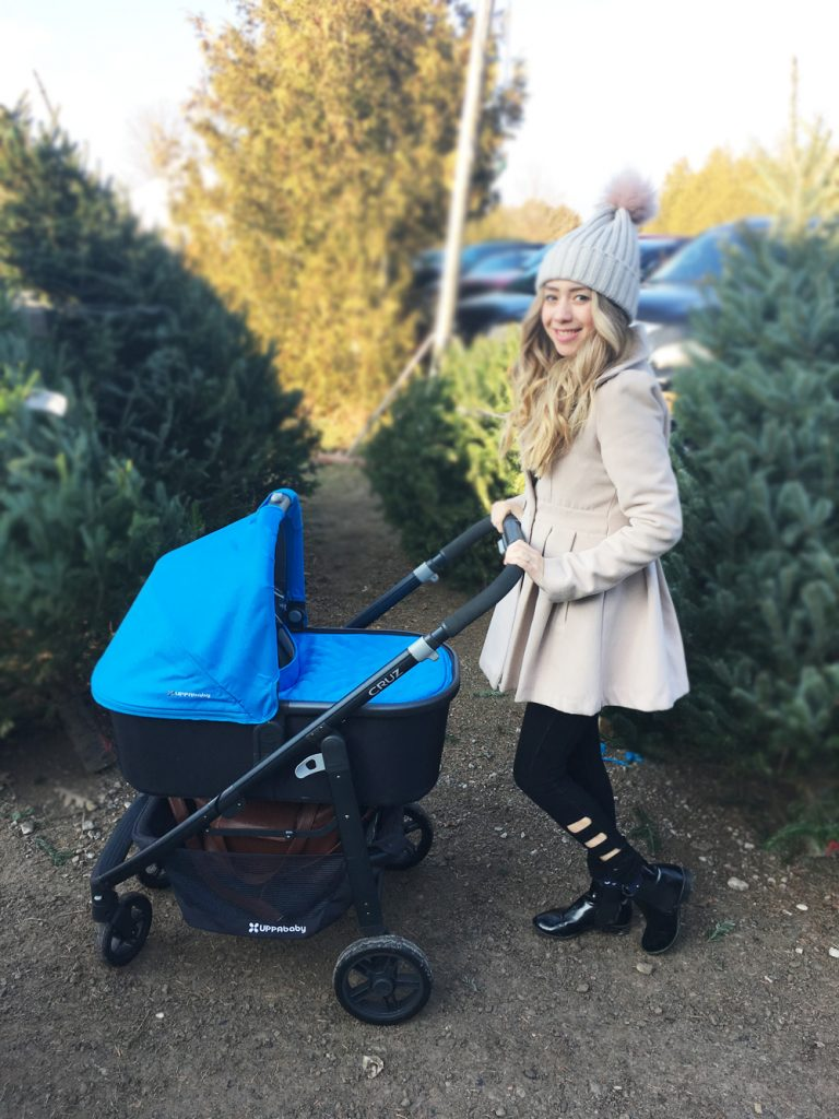 Uppababy stroller Christmas Tree Cutting